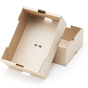 what is paperboard packaging independent printing company inc