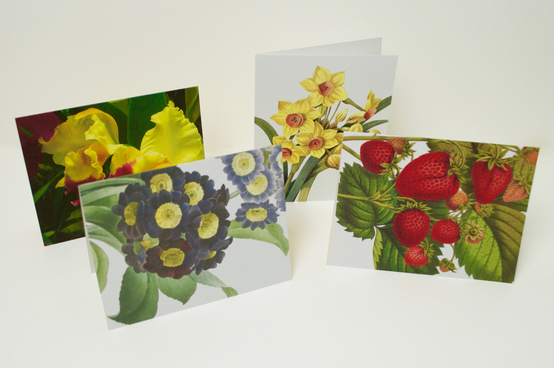 Greeting Card Printing Independent Printing Compnay